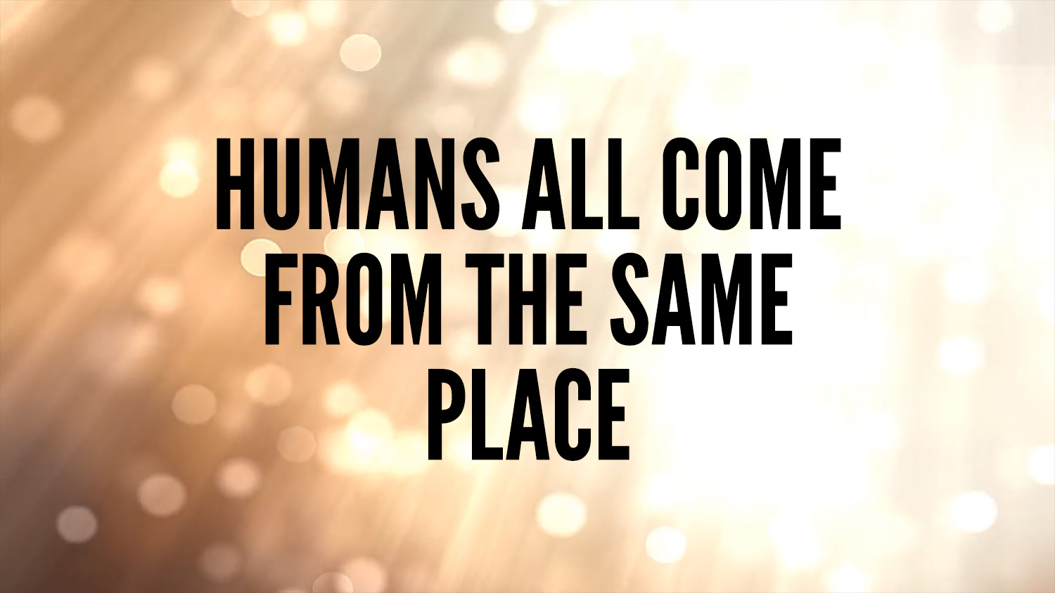 humans all come from the same place