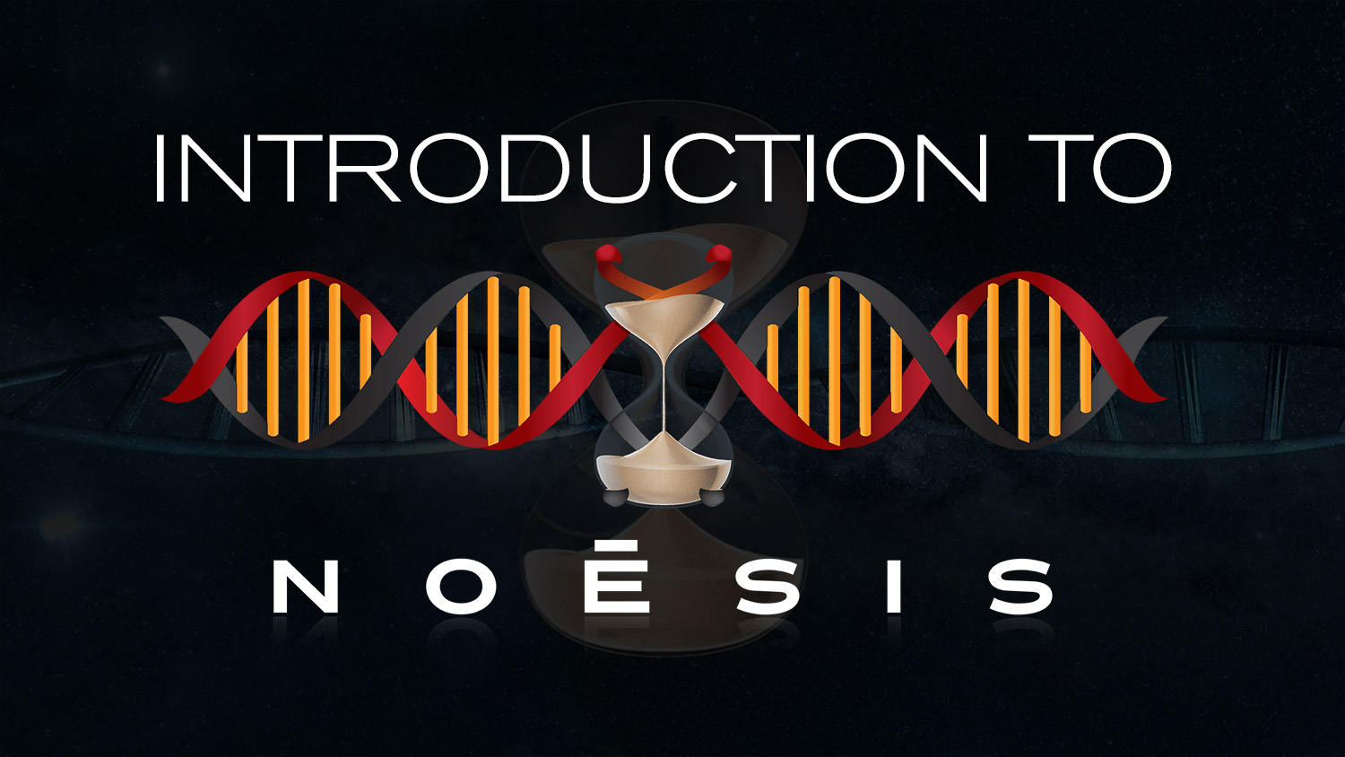 introduction to noesis