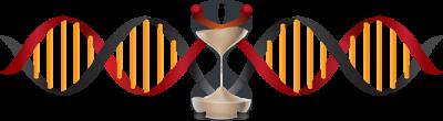 Logo_No-Text